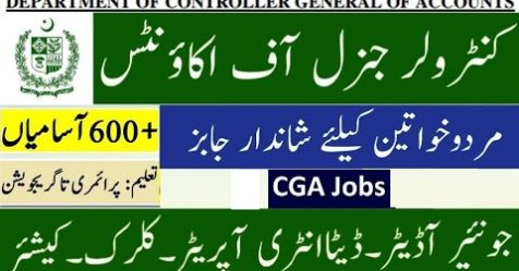 Department of Controller General of Accounts job logo