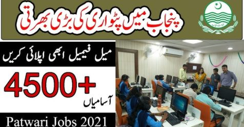 patwari jobs logo